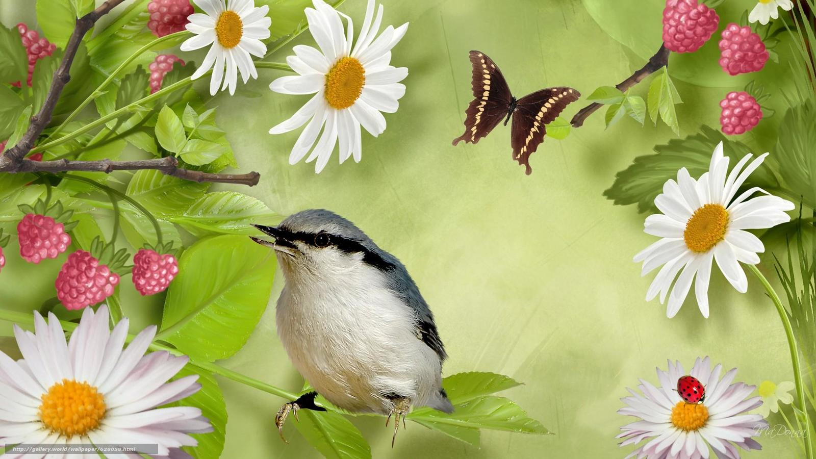 птица, бабочка, цветы