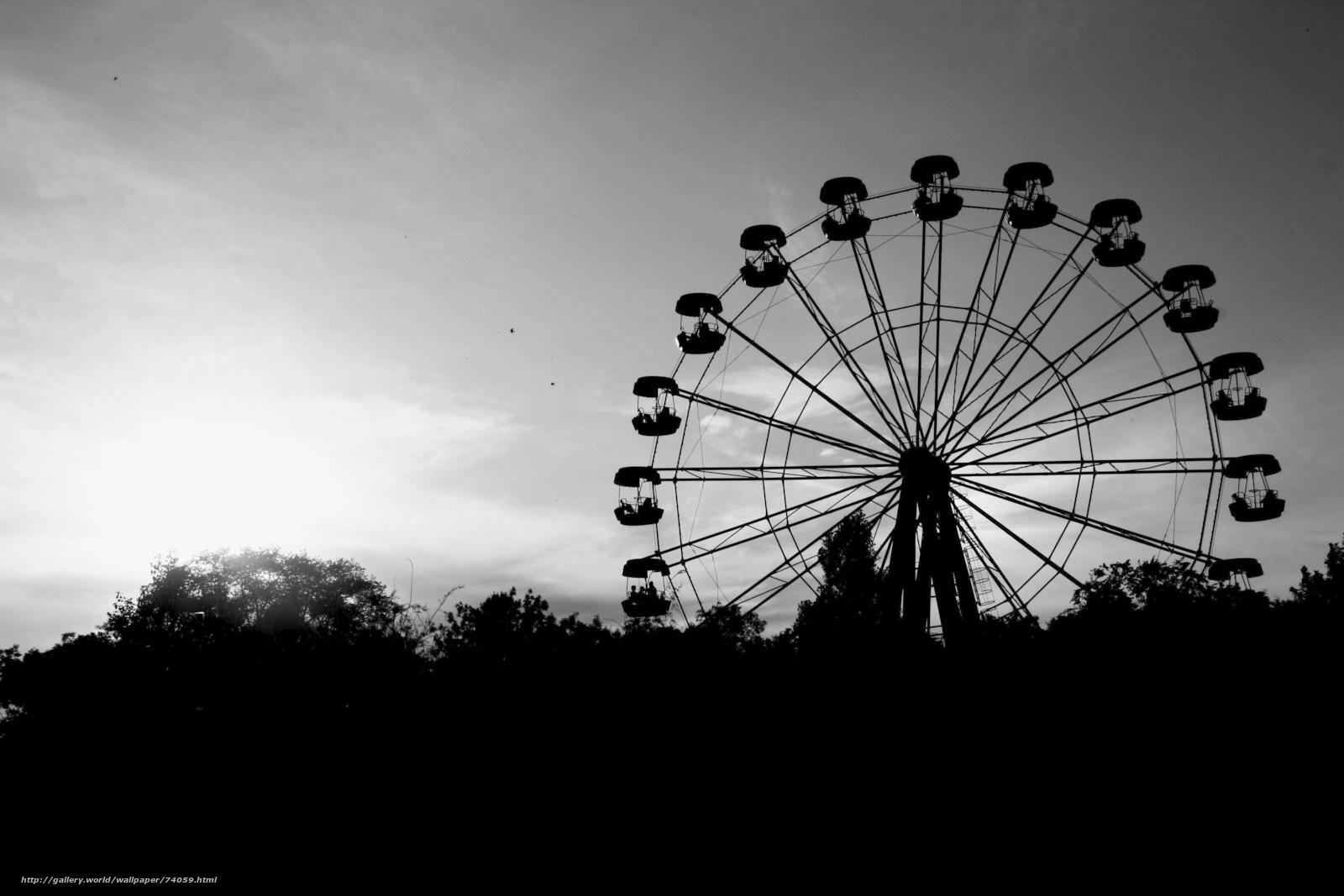 Секс на колесе обозрения рассказ 8 фотография