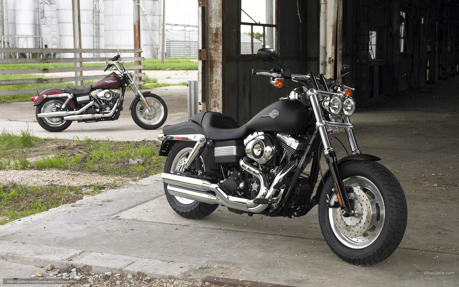 Used 2008 Harley Davidson Fxdc Dyna Super Glide Custom For: Download Wallpaper Harley-Davidson, Dyna, FXDC Dyna Super
