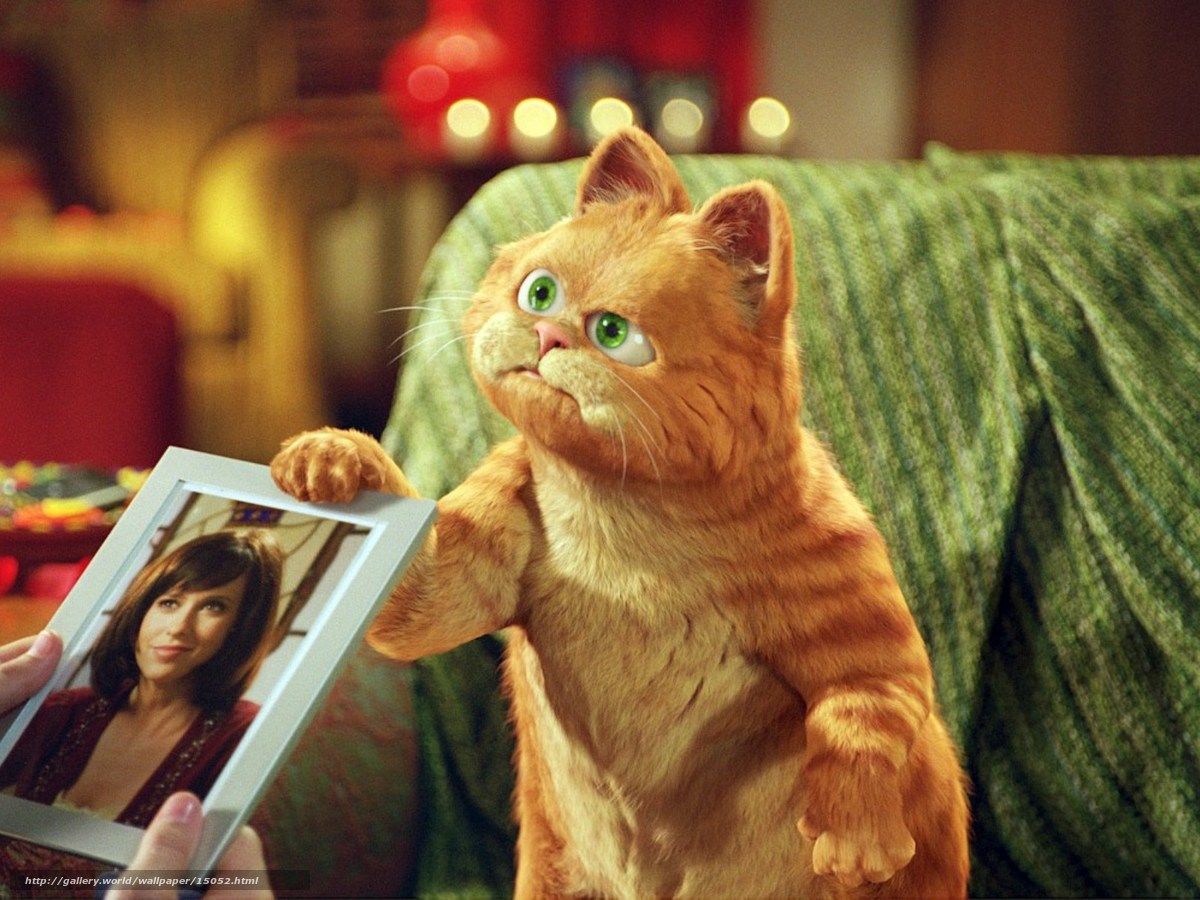 Download wallpaper Garfield 2: Tail of Two Kitties, Garfield: A Tail ...
