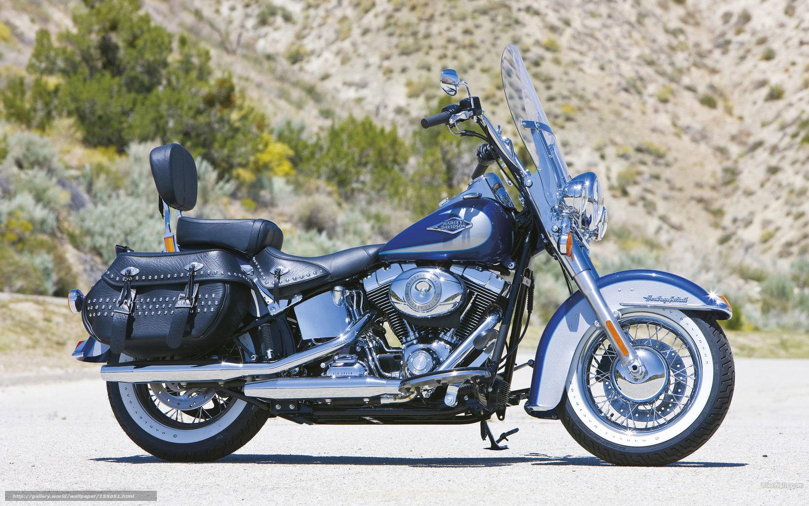 Download Wallpaper Harley-Davidson, Softail, FLSTC