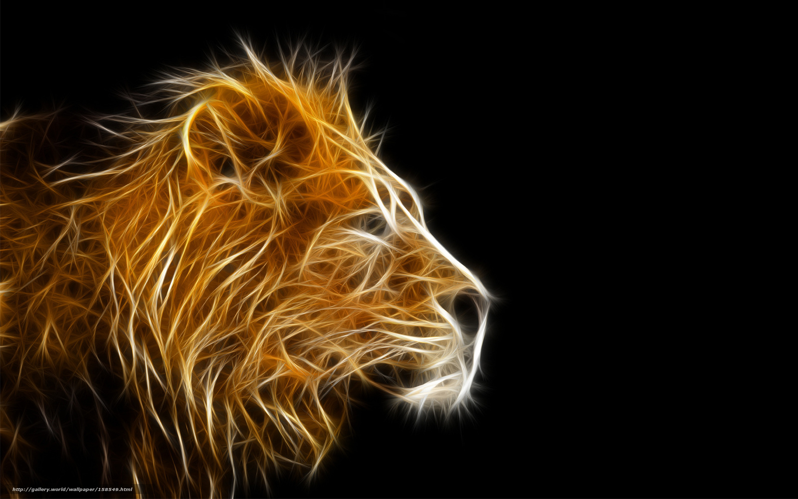 light lion wallpaper - photo #1