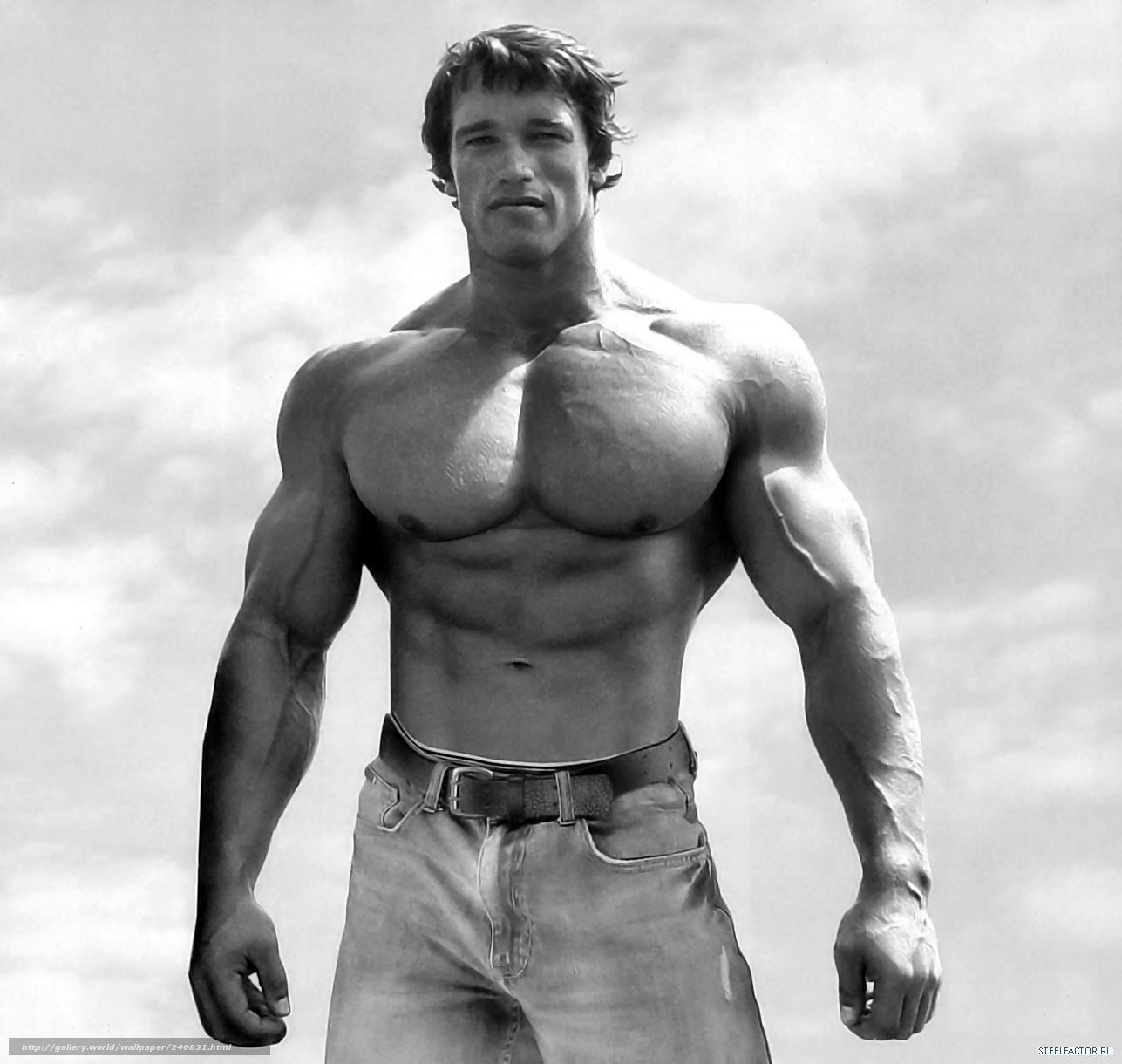 Download wallpaper Arnold Schwarzenegger, body-building