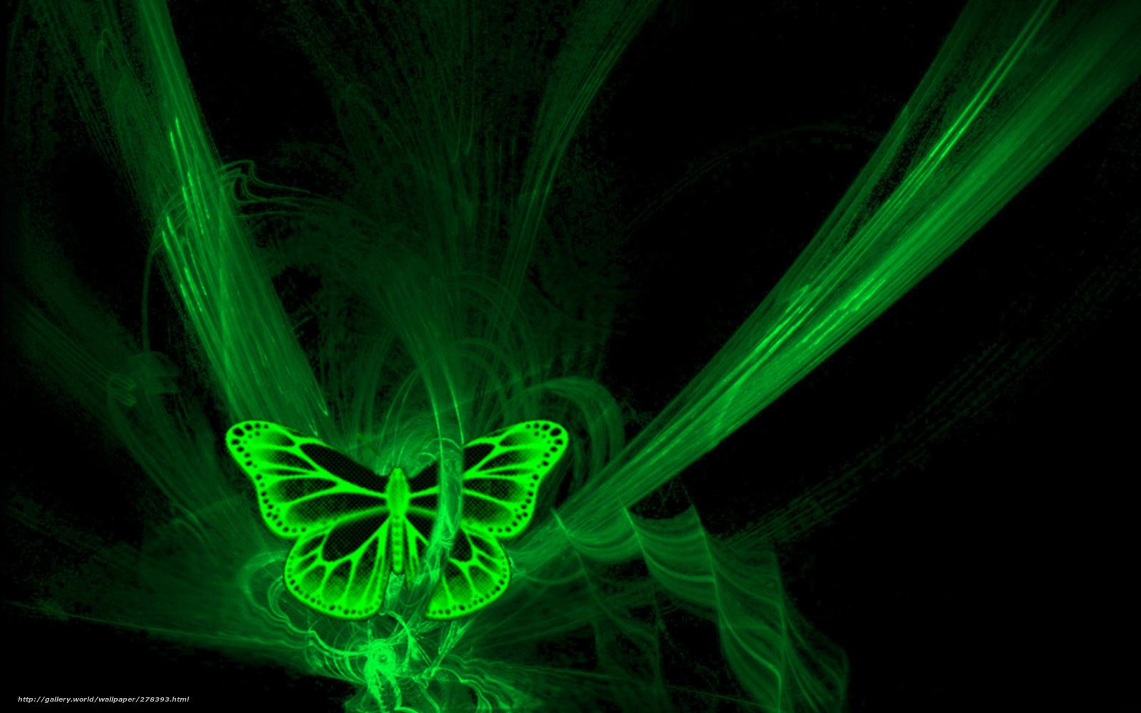 download wallpaper butterfly neon black green free