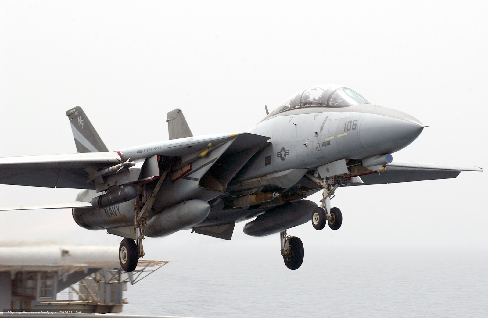 F 14 (戦闘機)の画像 p1_32