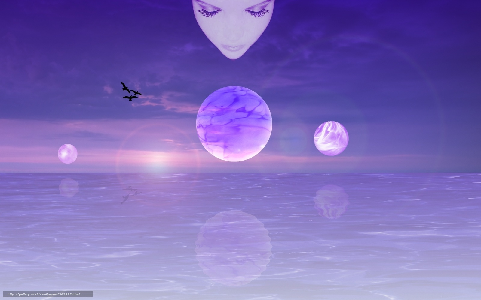 Download wallpaper meditation flight thought free - Wallpaper picture ...