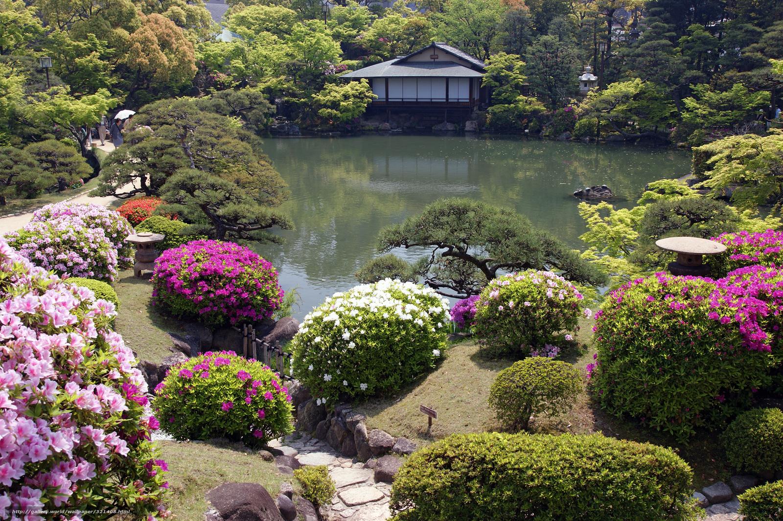 Tlcharger Fond d'ecran Fleurs, Jardin Japonais, loge Fonds d'ecran gratuits pour votre rsolution ...
