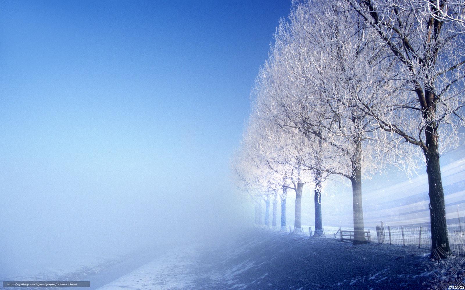 Scaricare gli sfondi inverno alberi nebbia sfondi gratis for Sfondi gratis desktop inverno