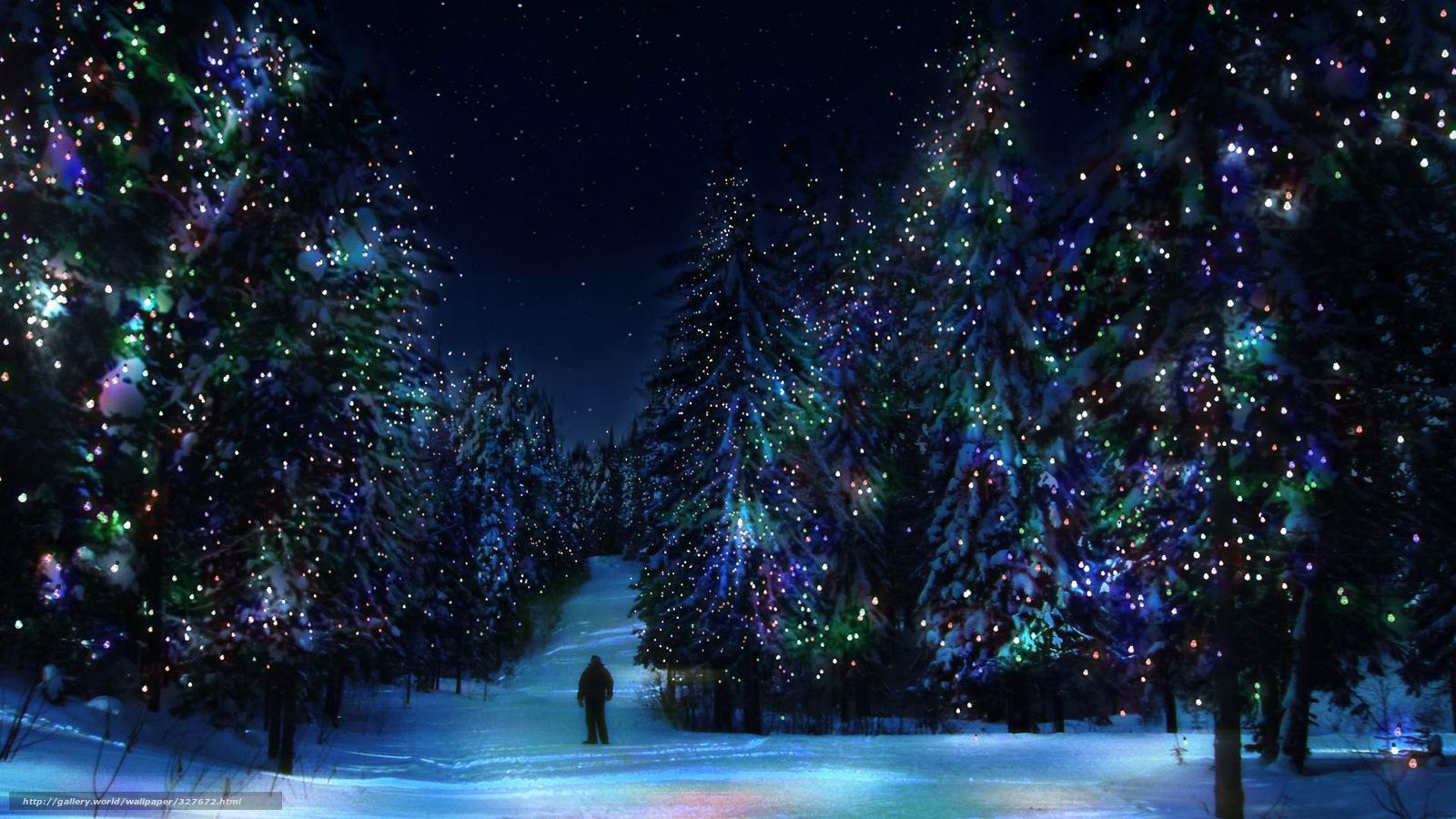 Скачать обои лес елки зима новый год