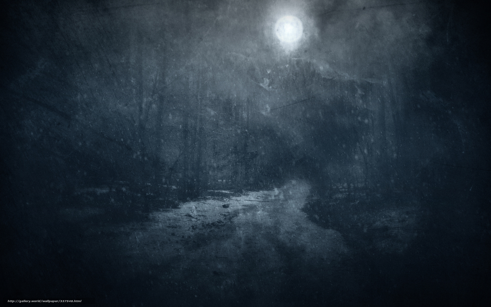 Forest At Night With Full Moon Find  forest  night  dusk Forest At Night With Moon