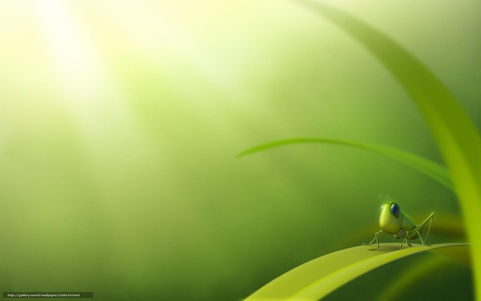 Scaricare gli sfondi divertente verde cavalletta sfondi for Immagini divertenti desktop