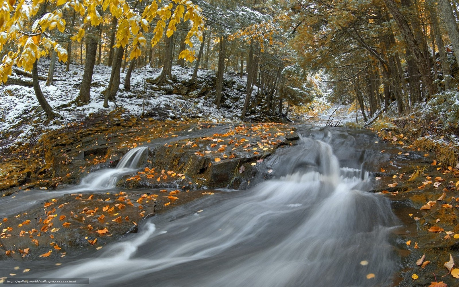 late fall wallpapers and backgrounds - photo #44