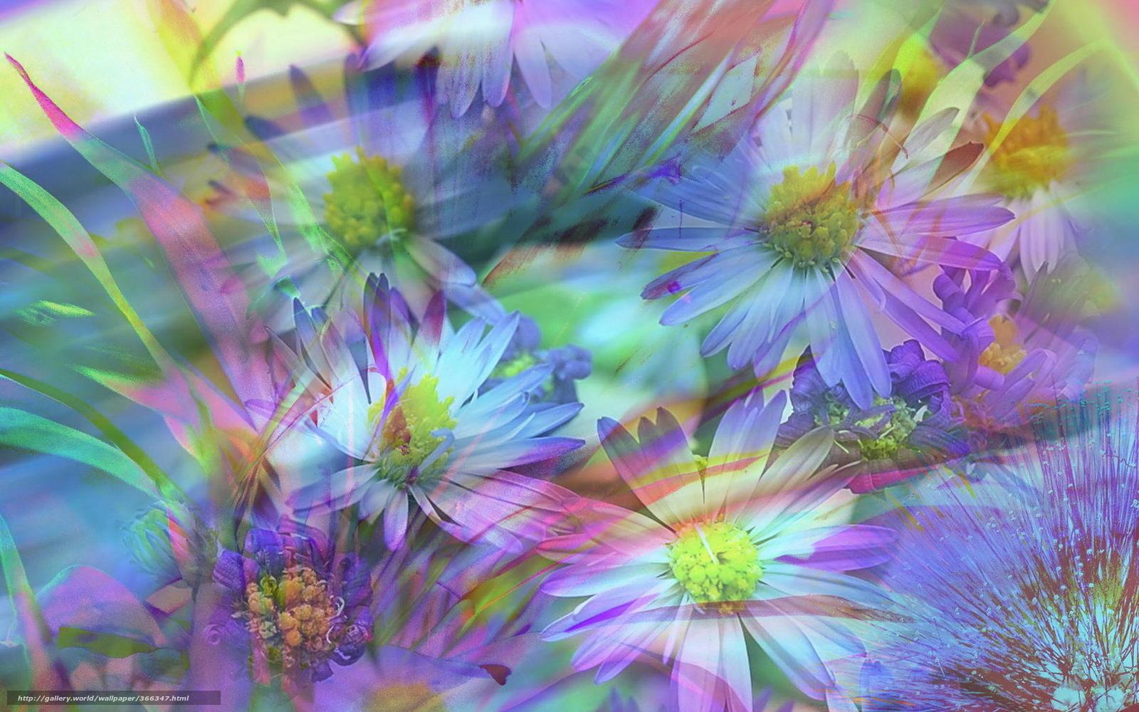 нежно, фиолетовый, красиво, фон, цветы ...: www.гудфон.рф/обои/366347-nejno_fioletovyiy_krasivo_fon...