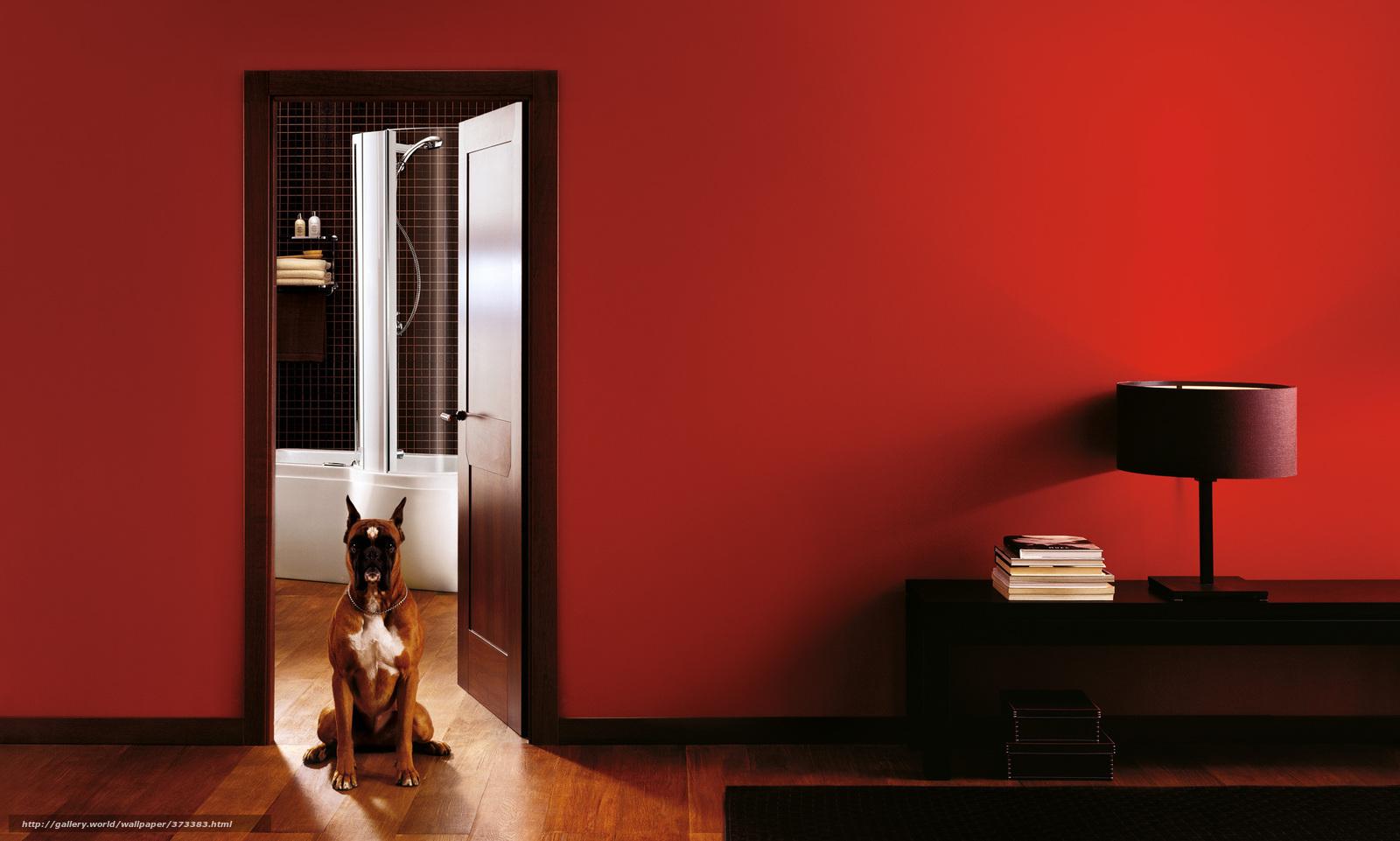 Descargar gratis interior cuarto de bao silla perrito - Silla para habitacion ...