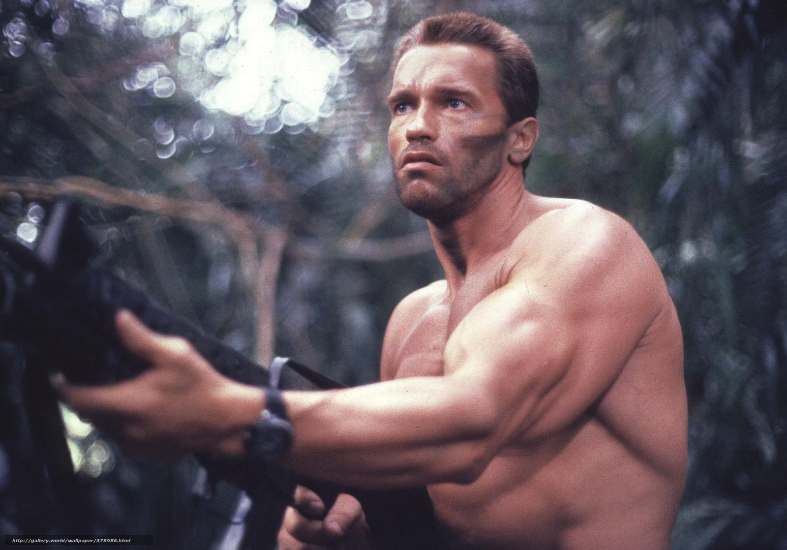 filme, quadro, Predato... Arnold Schwarzenegger