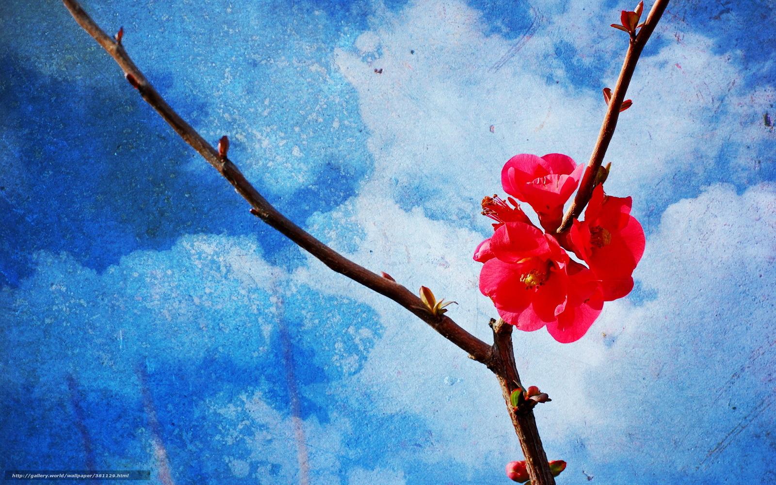 Tlcharger fond d 39 ecran branche printemps fond style for Fond ecran style