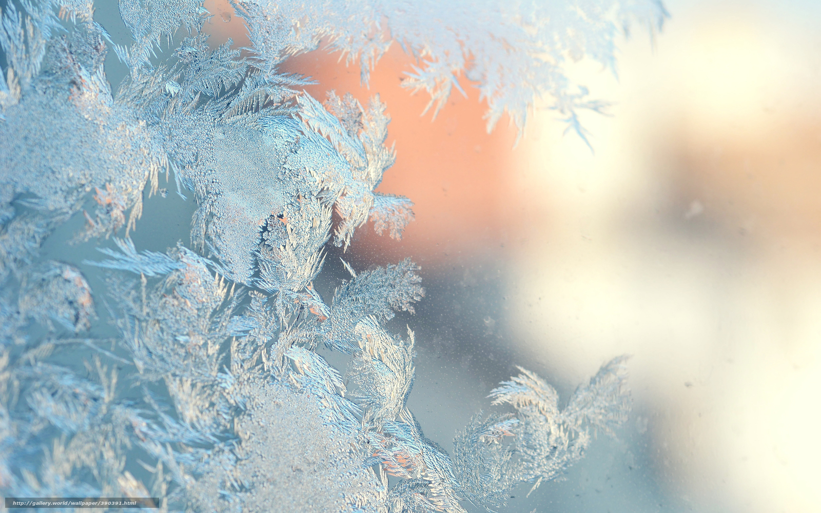 free winter wallpaper for desktop