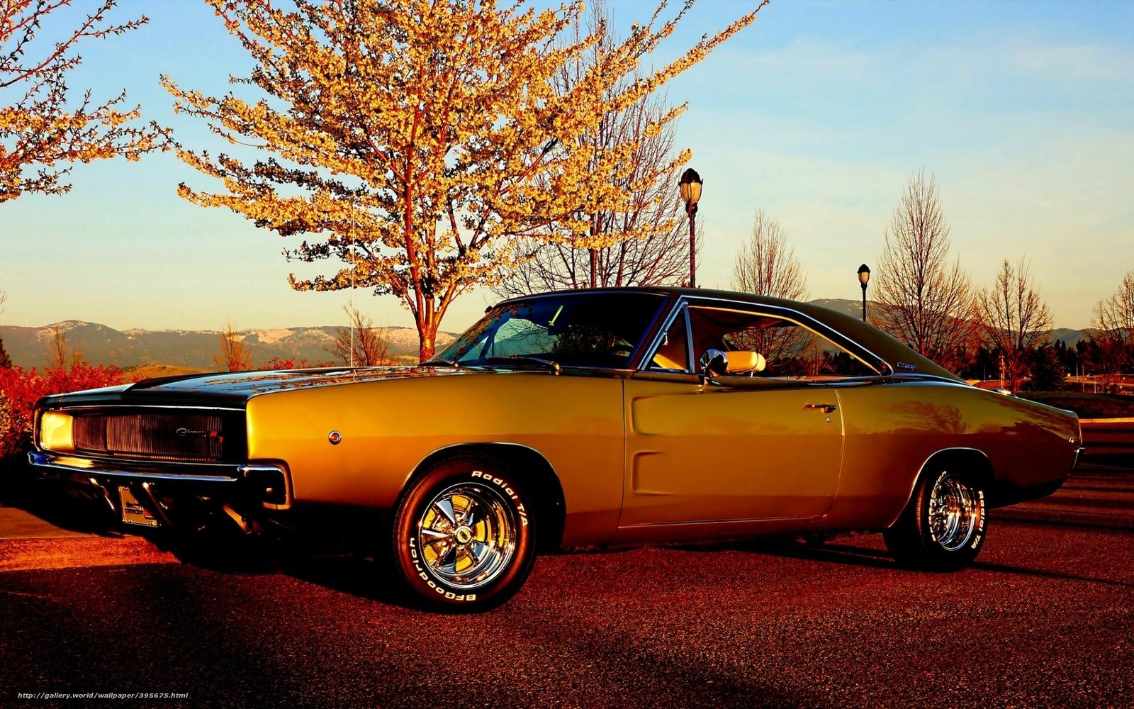 http://st.gdefon.com/wallpapers_original/wallpapers/395675_dodzh_chardzher_peredok_muskul_1920x1200_(www.GdeFon.ru).jpg Muscle Cars Wallpapers High Resolution