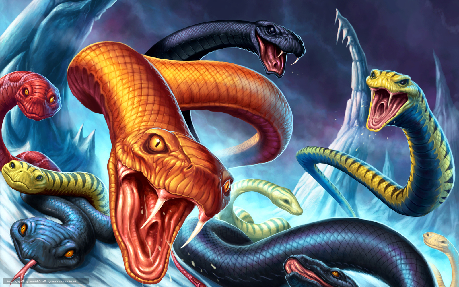 free download hd wallpapers of snakes