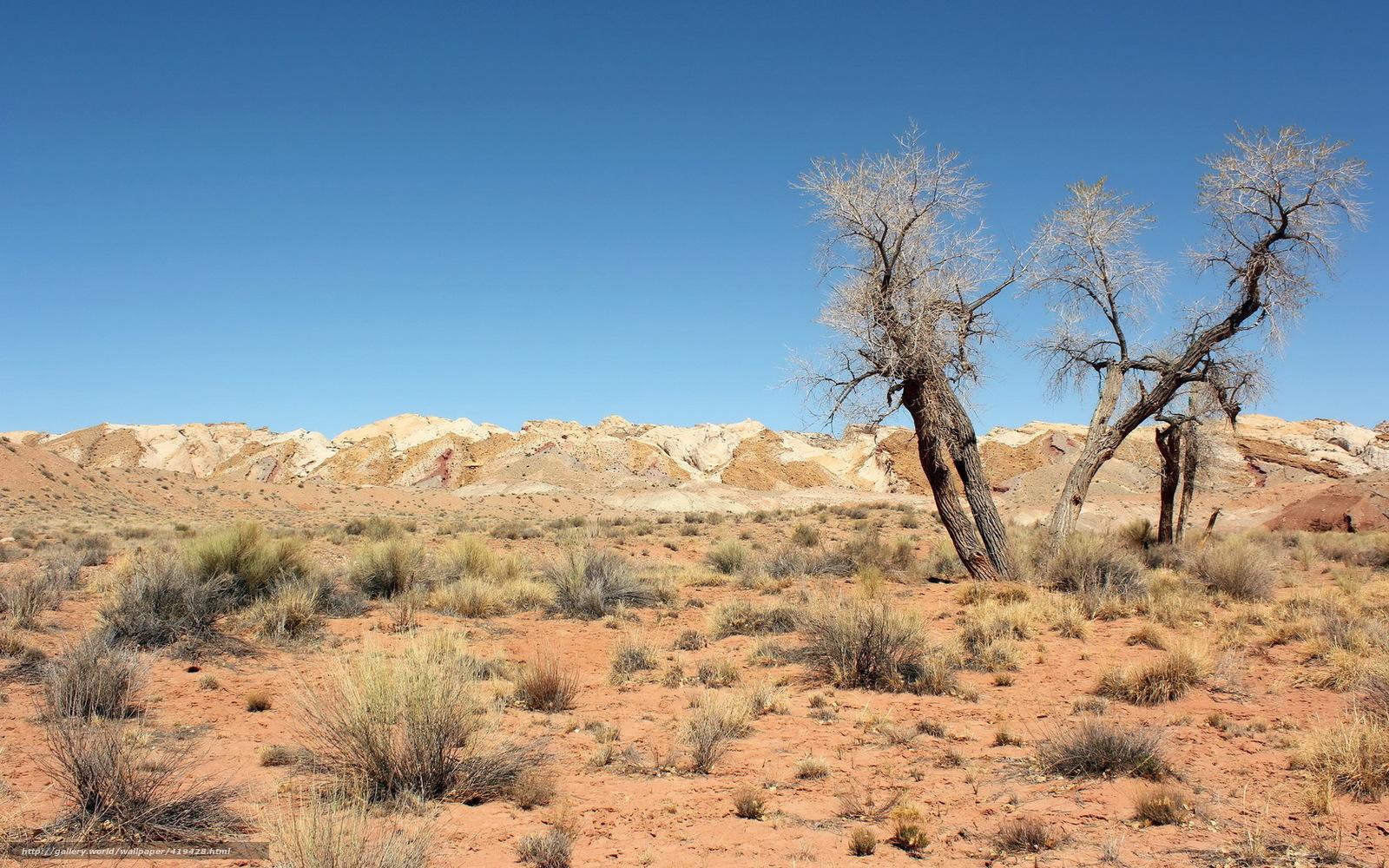 desert landscape wallpaper - photo #28