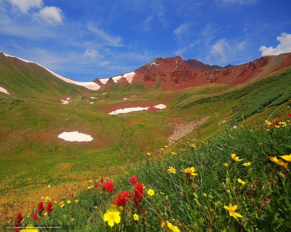 Scaricare gli sfondi montagne fiori erba estate sfondi for Desktop gratis estate