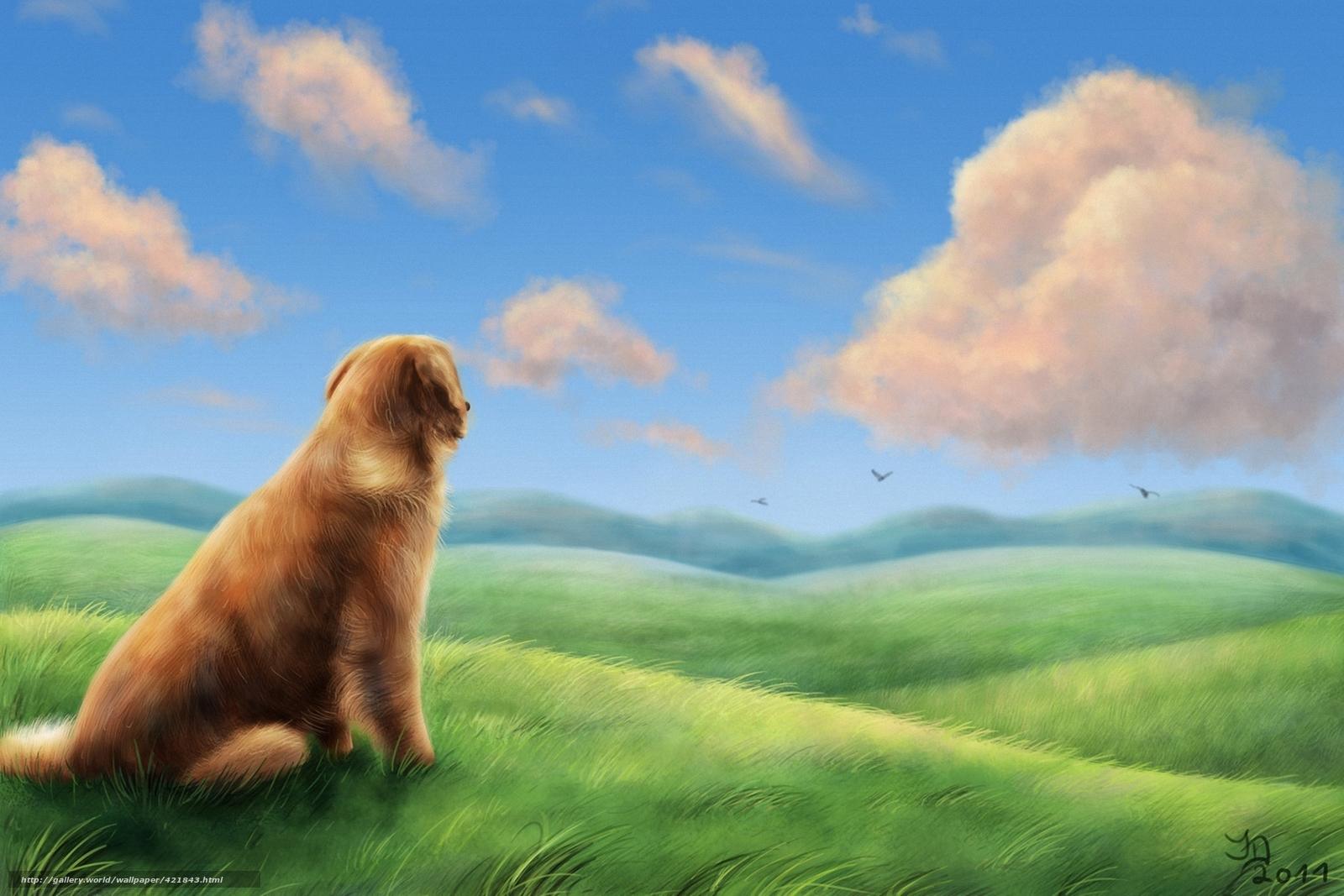 Download wallpaper Art,  dog,  grass,  field free desktop wallpaper in the resolution 1920x1280 — picture №421843