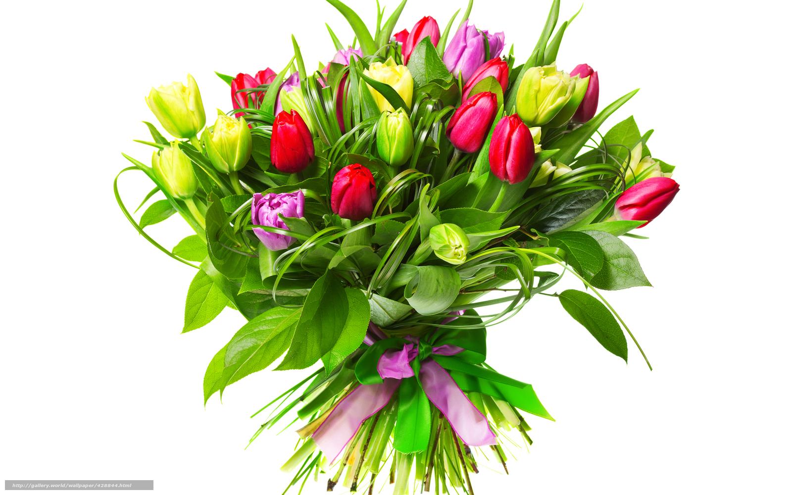 Цветы 428844 ручное изменение размера