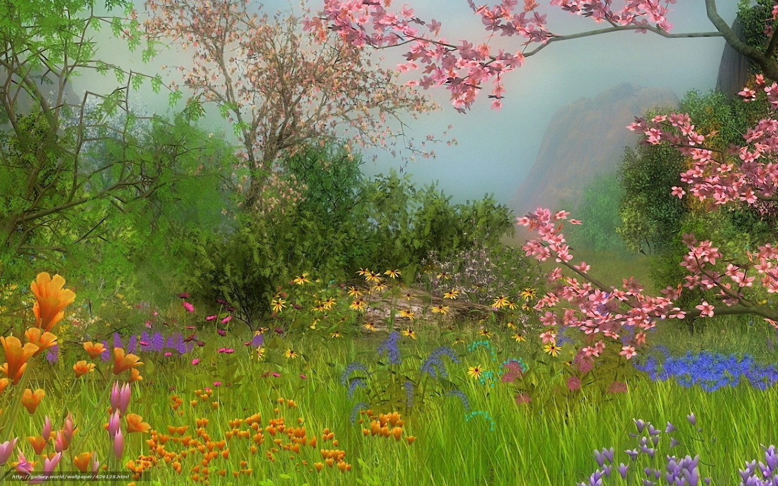 Разноцветные цветы лето все