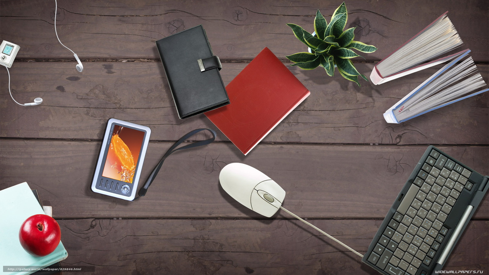 download wallpaper computer mouse office desk flower