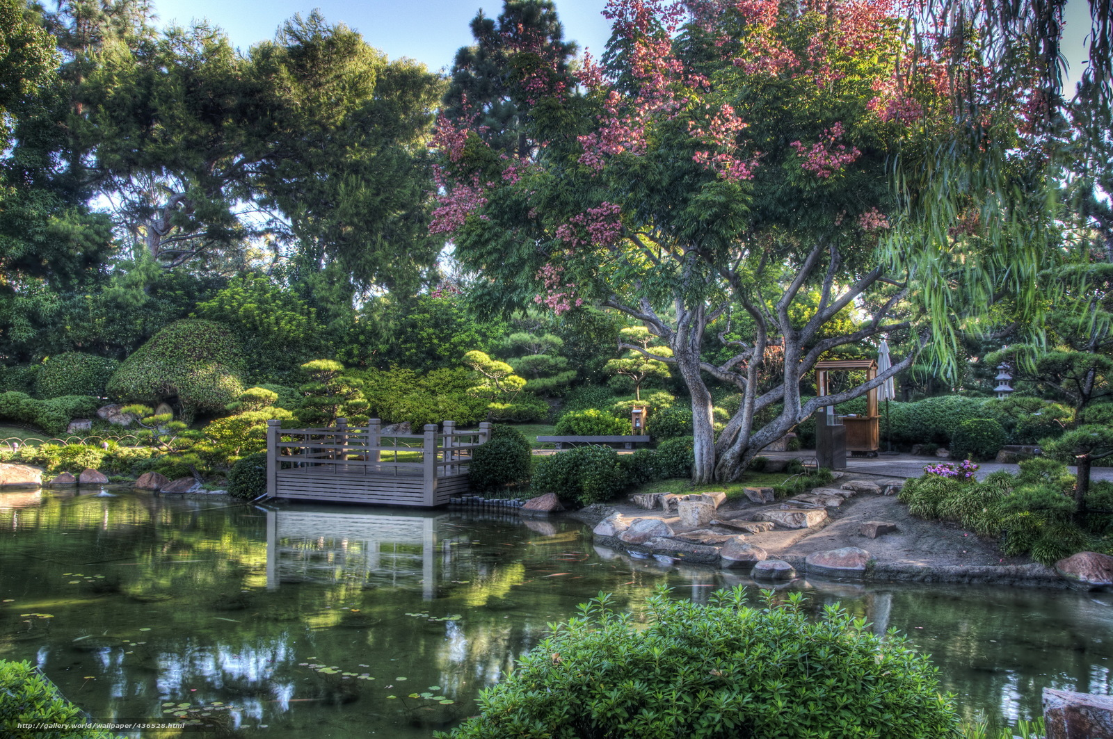 Download Wallpaper Japanese Garden Pond Park Free