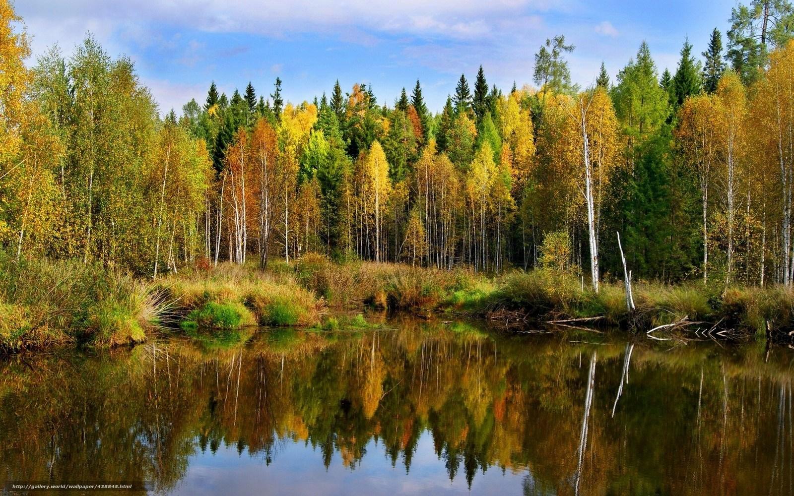 Wallpaper landscape autumn forest pond free desktop wallpaper