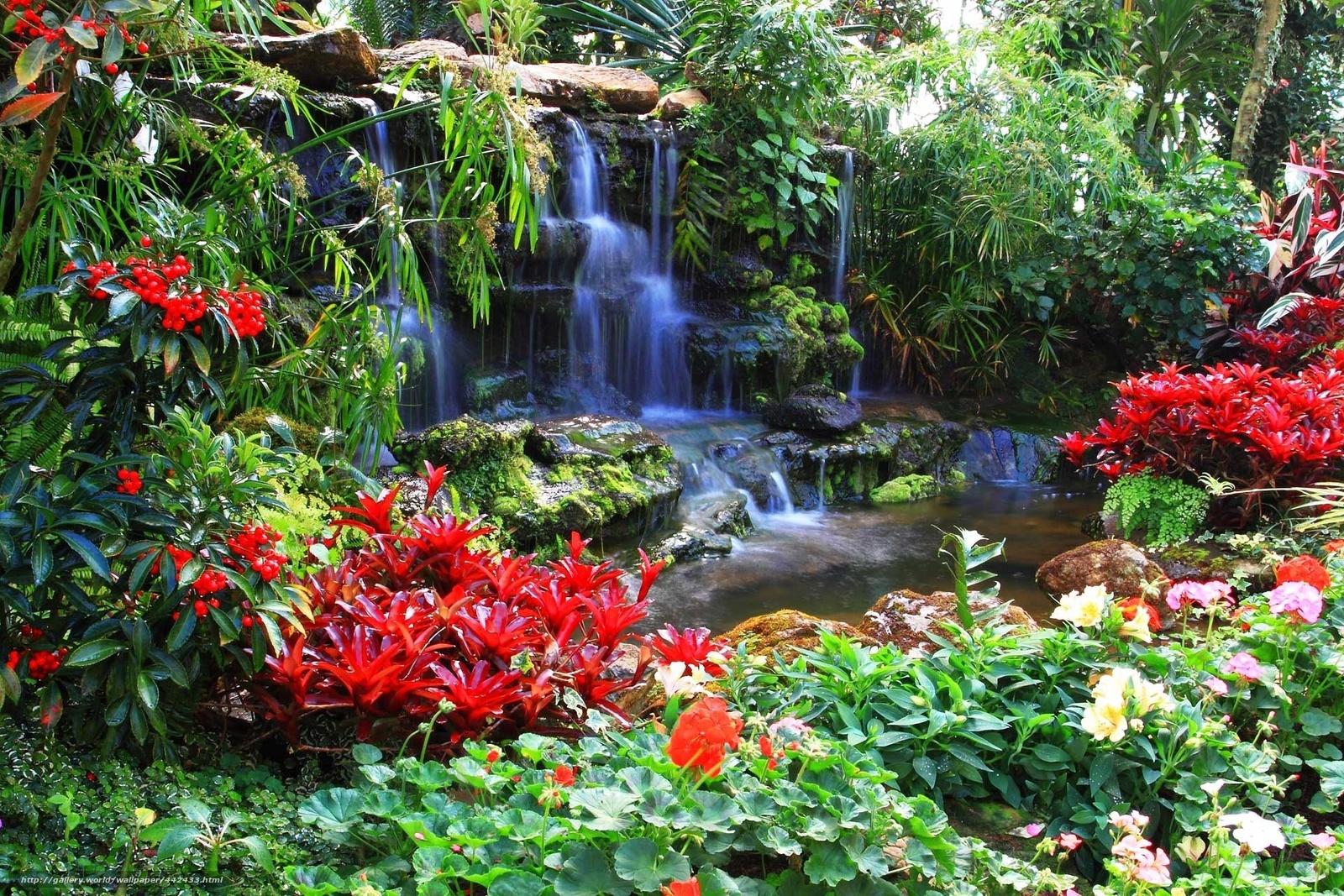 Flores, cachoeira, parque