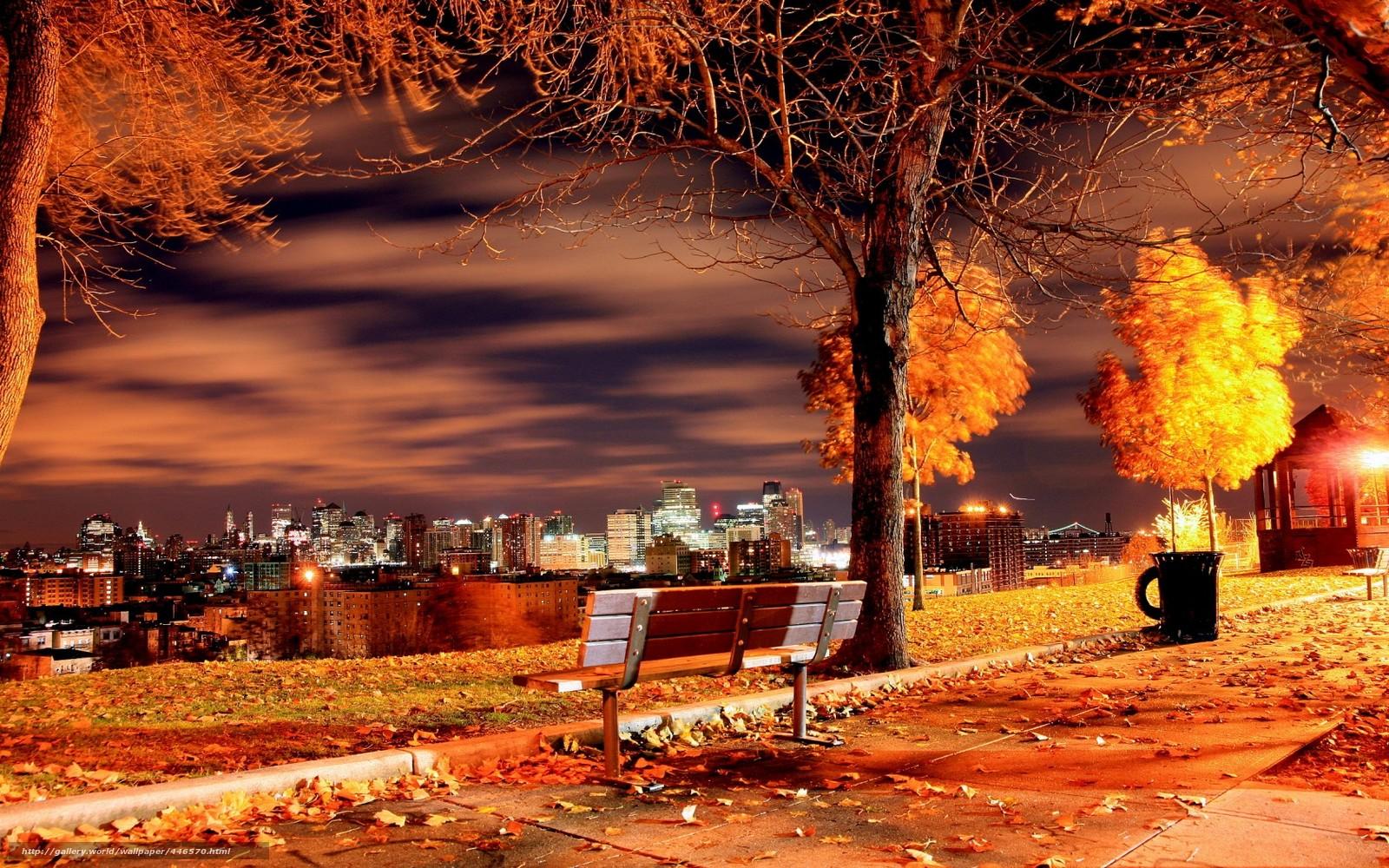 noite, parque, Nova Iorque, outono, cidade