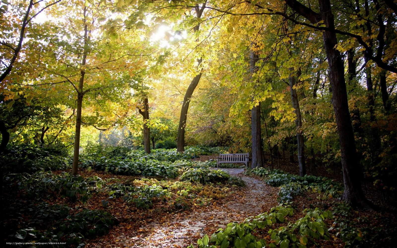 Tlcharger Fond D Ecran Parc Banc Nature Fonds D Ecran