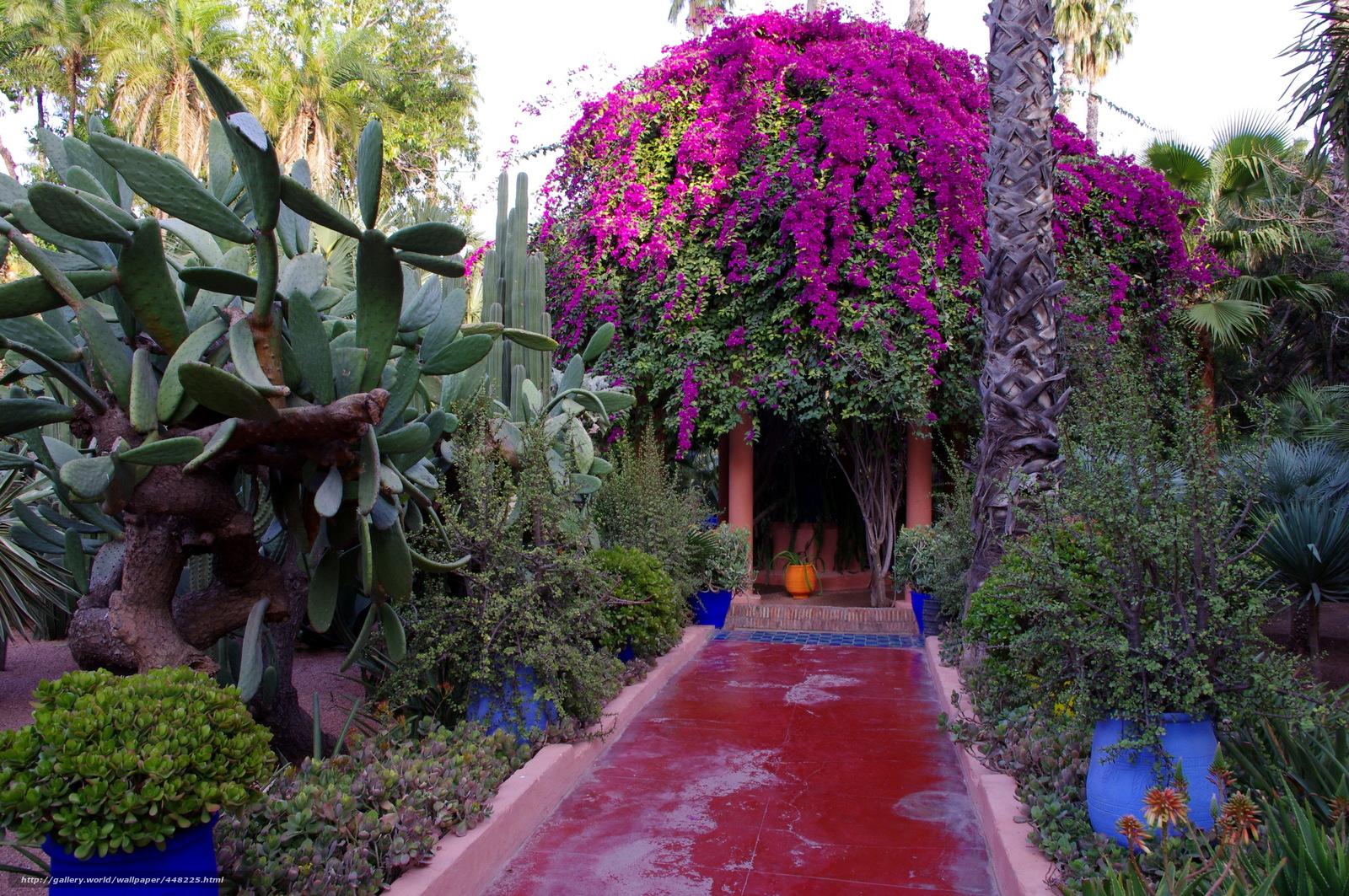 Download wallpaper garden morocco marrakech jardin for Jardin majorelle
