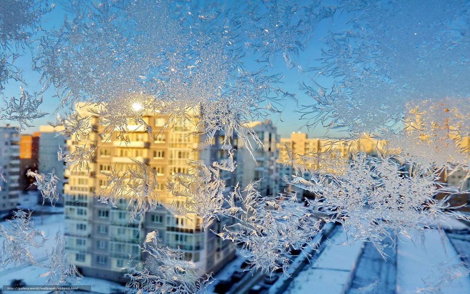 Patrn escarcha ventana casa invierno