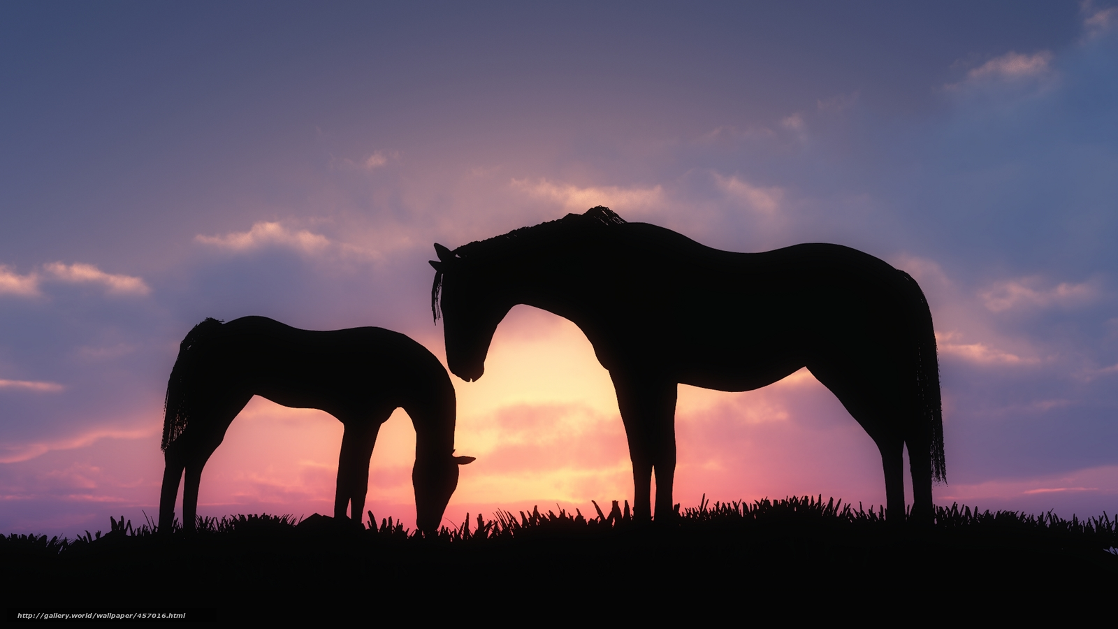 download wallpaper horses sunset - photo #7