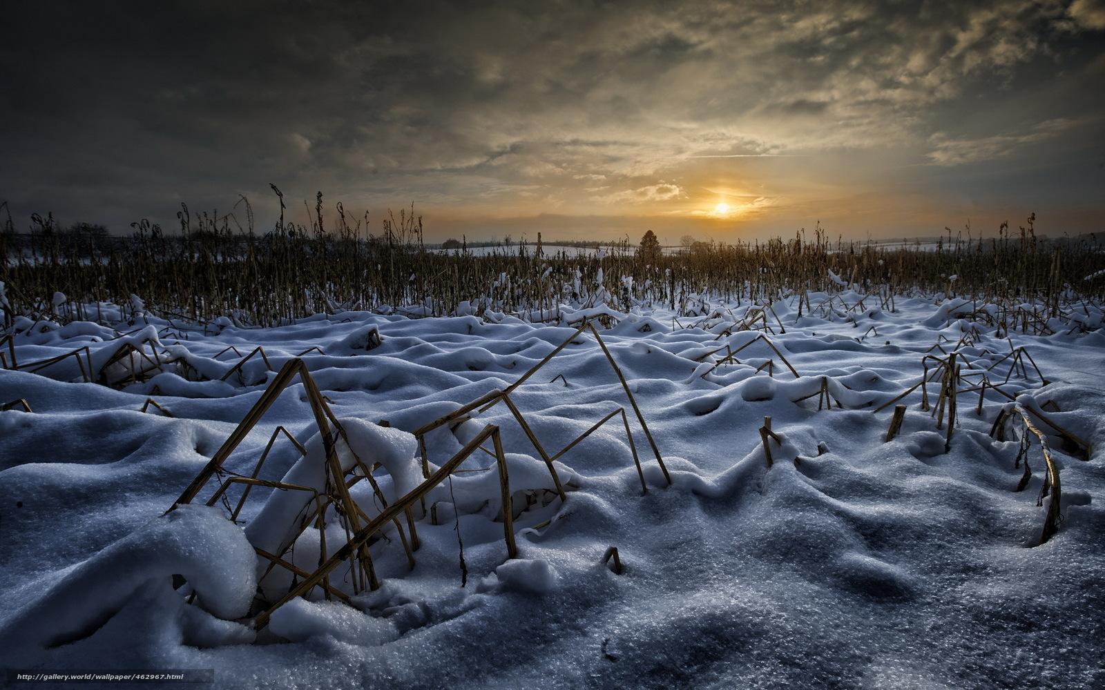 Tlcharger Fond d'ecran champ,  hiver,  nuit Fonds d'ecran gratuits pour votre rsolution du bureau 1920x1200 — image №462967