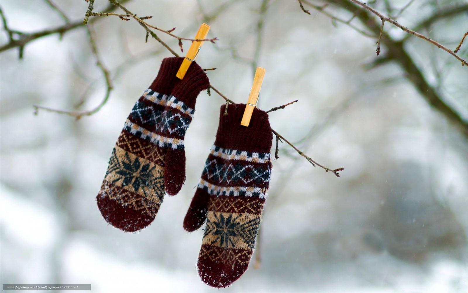 Download wallpaper branch, Winter, snow, mittens free ...