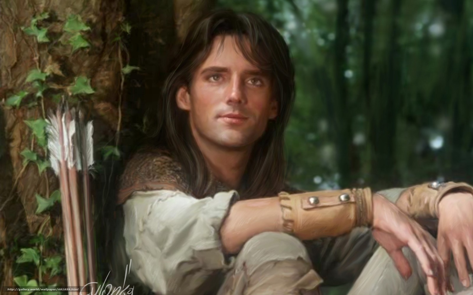 Download wallpaper Robin of Sherwood,  Robin Hood,  Michael Pride,  series free desktop wallpaper in the resolution 1680x1050 — picture №481859