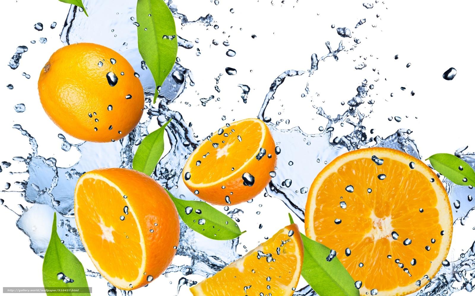 Служба поддержки клиентов Цитрус  citrusua