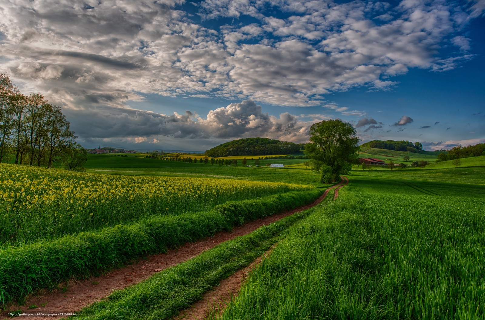 Download wallpaper nature landscape scenery view free desktop