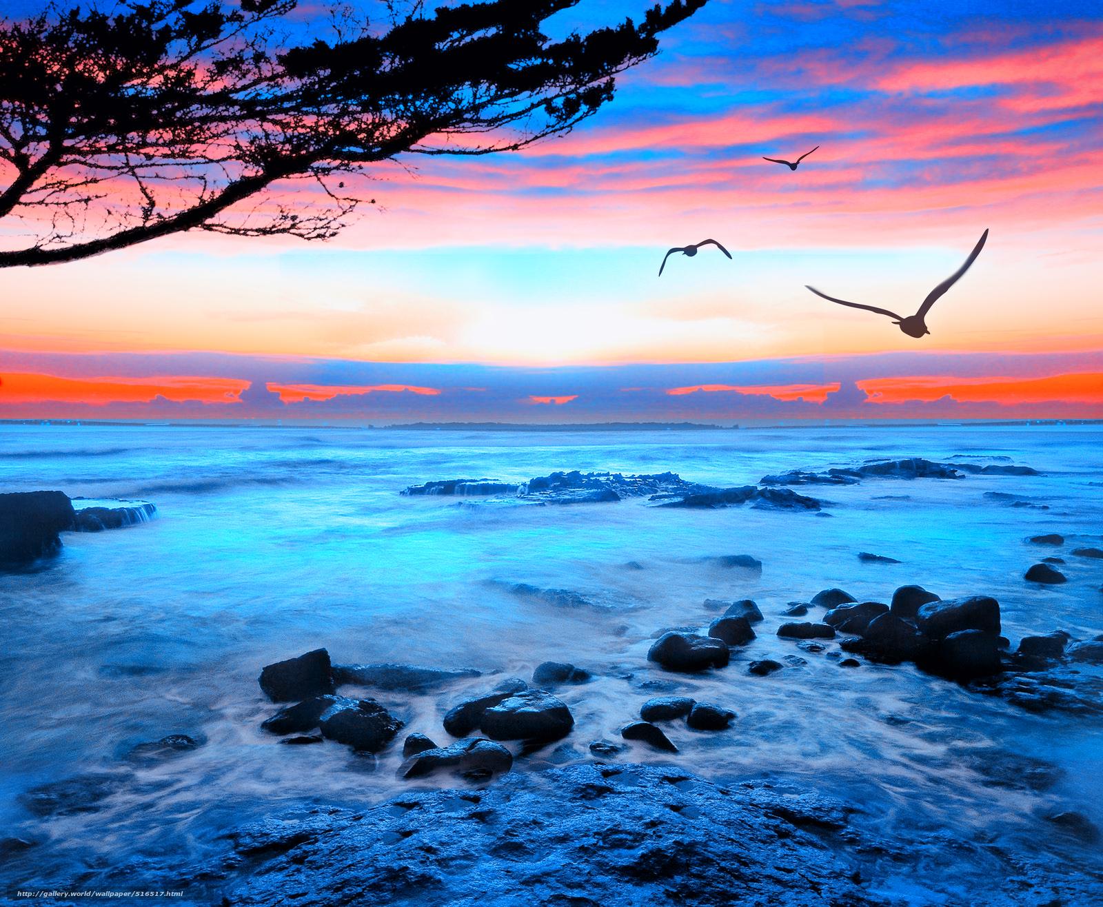 Scaricare gli sfondi tramonto mare gabbiani paesaggio for Foto per desktop gratis mare