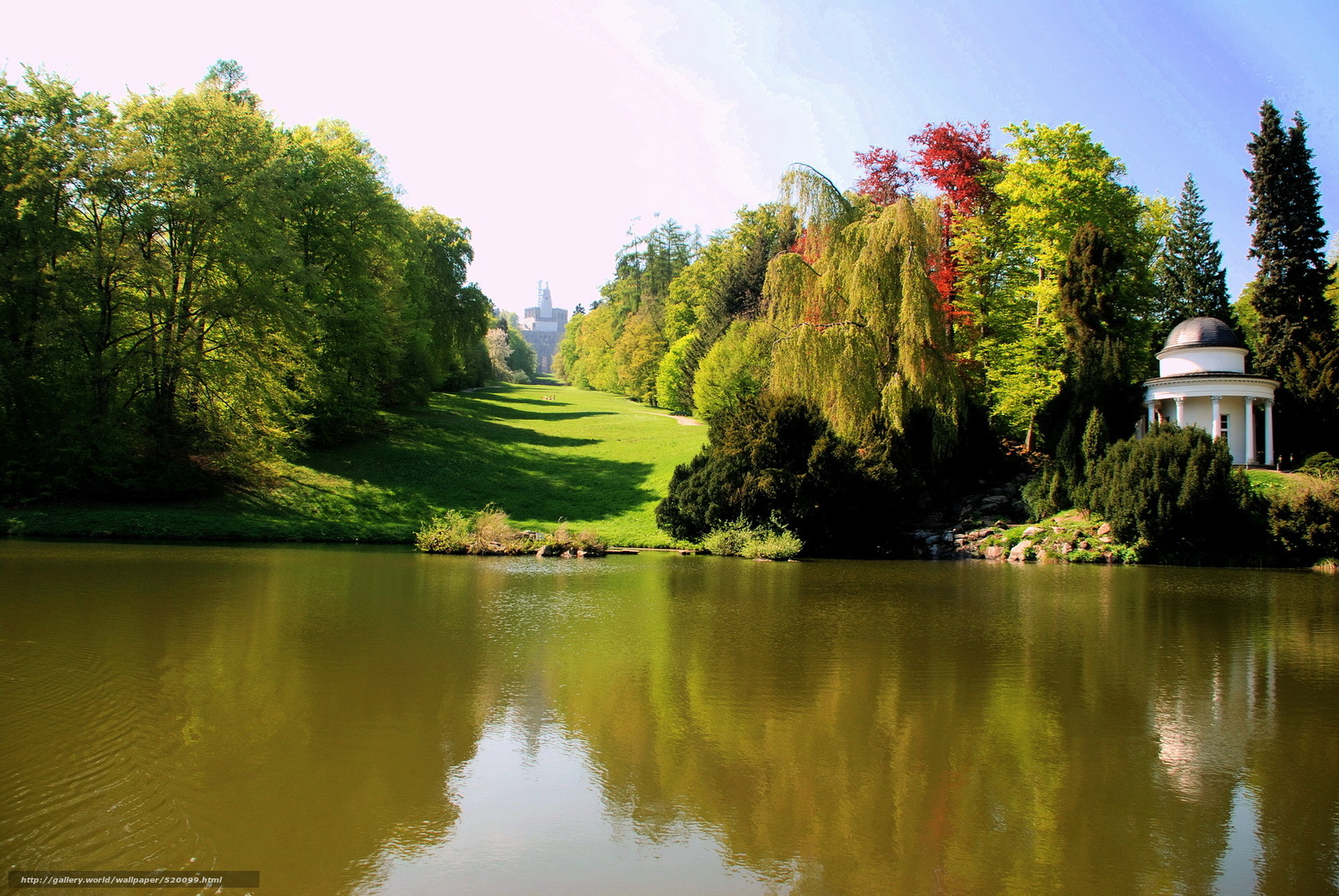 Wald, sommer, fluss, greens, wiese
