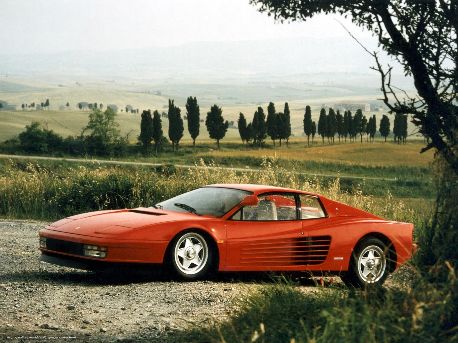 1985 ferrari testarossa wallpaper - photo #19