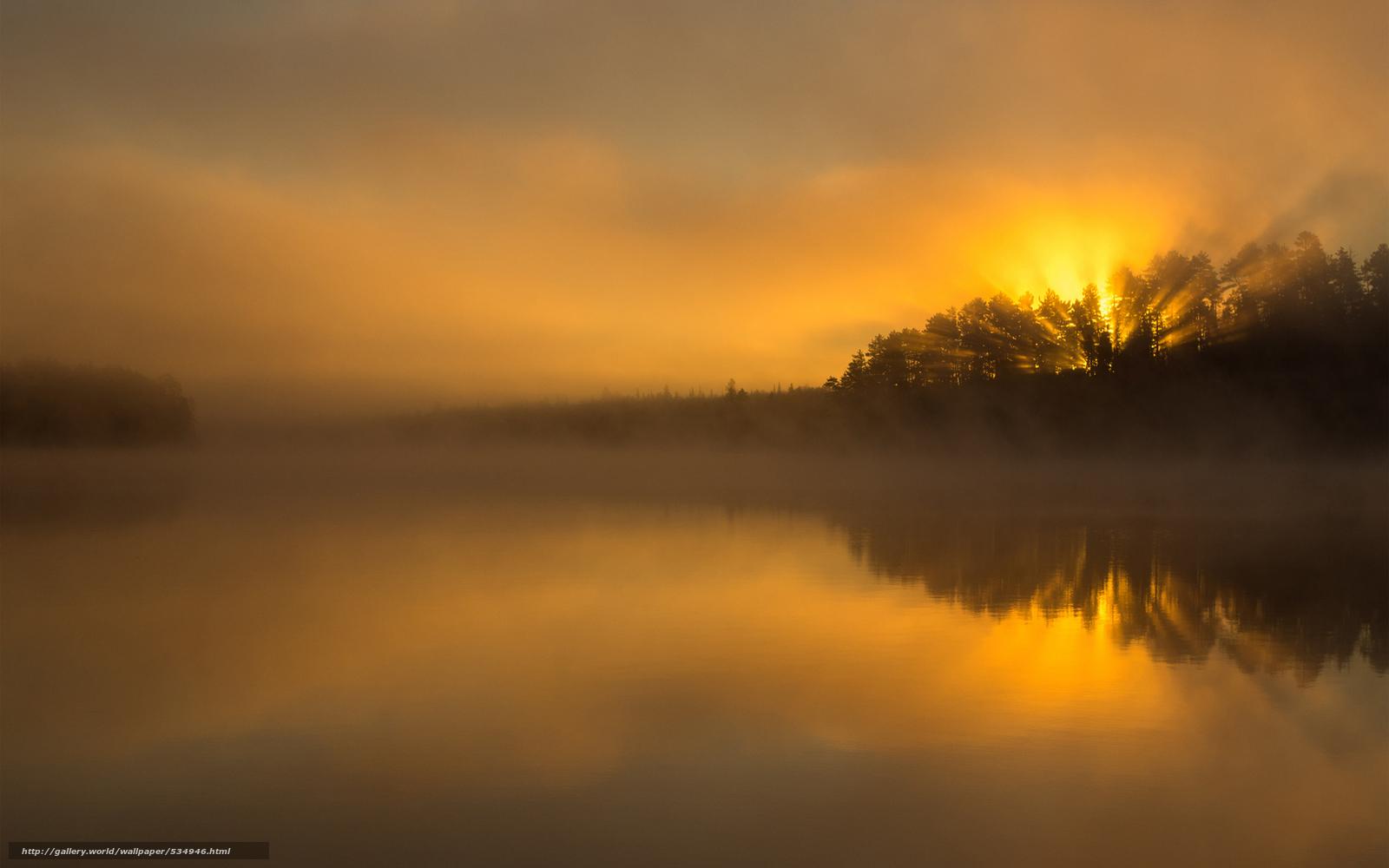 pobra tapety słońce, jezioro, poświata, las Darmowe tapety ...