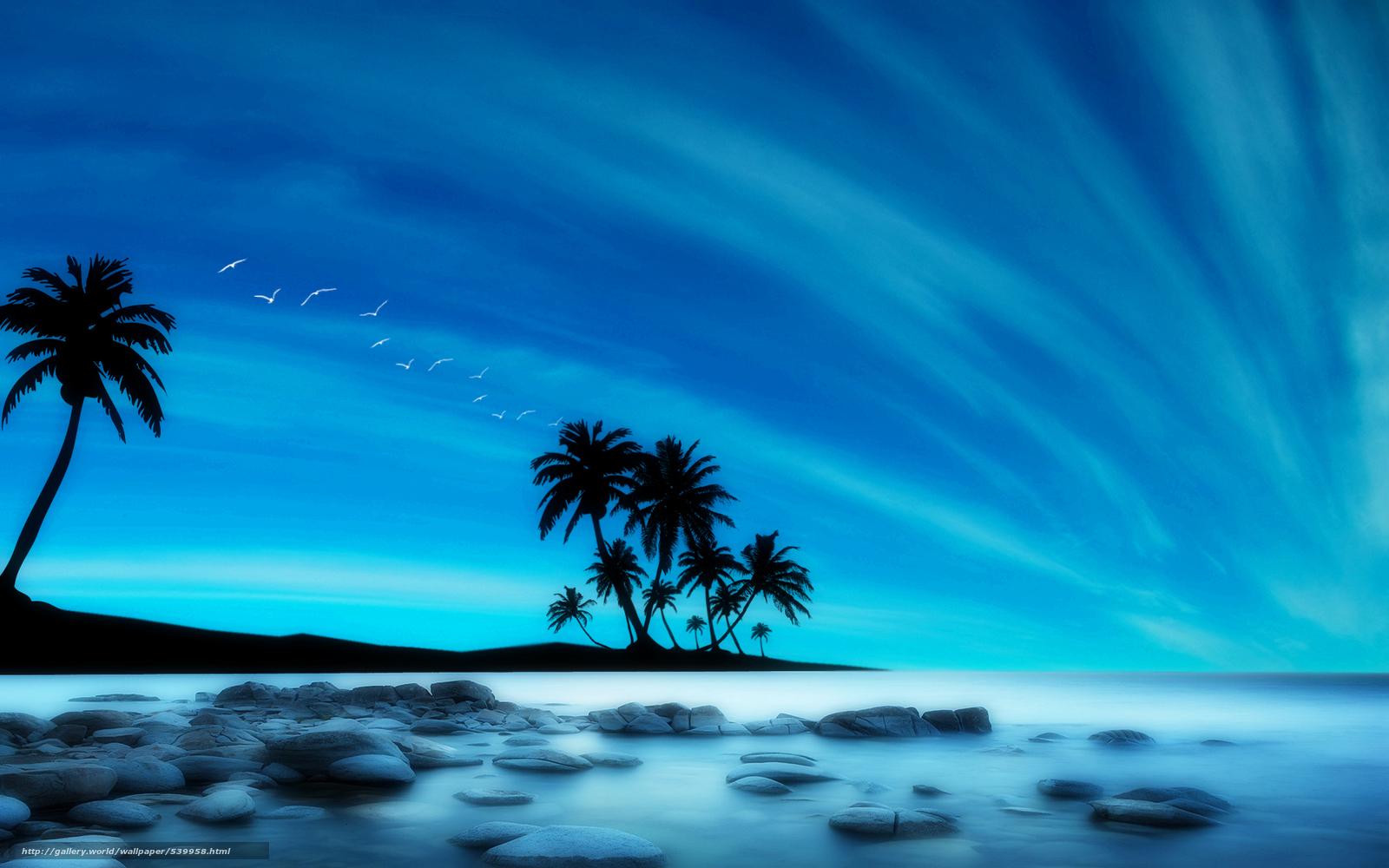 Scaricare gli sfondi mare palme paesaggio 3d sfondi for Sfondi per desktop 3d