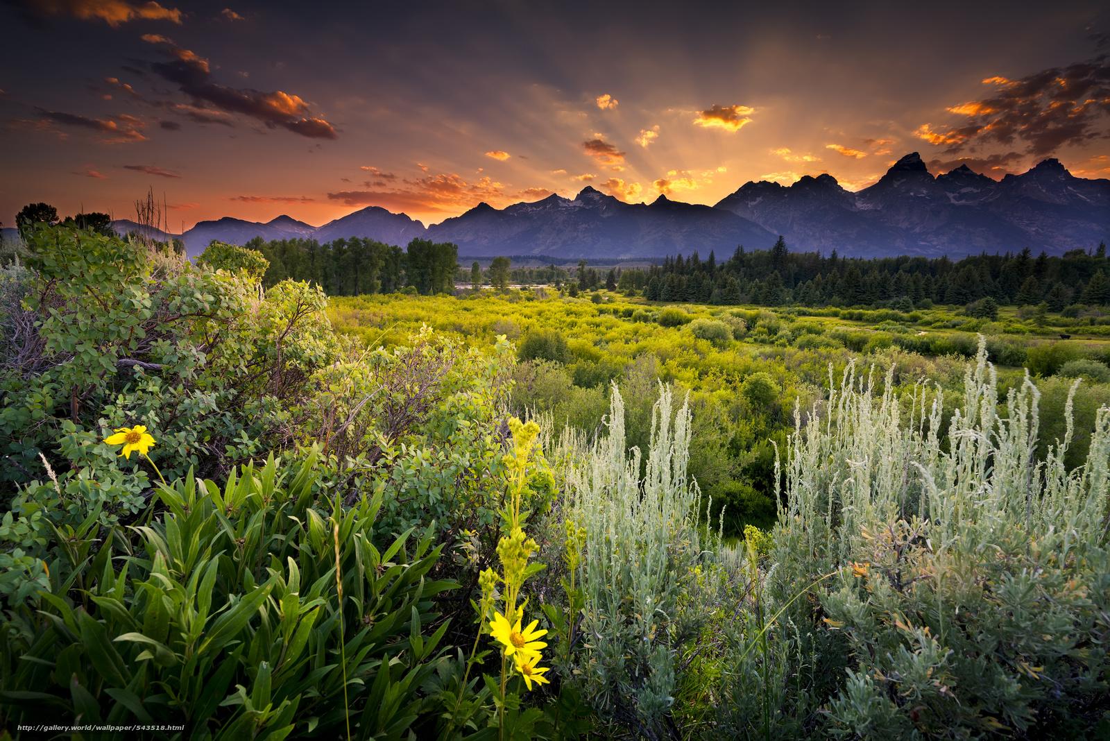 Snake river grand teton national park wyoming - Papel De Parede Grand Teton National Park Snake River