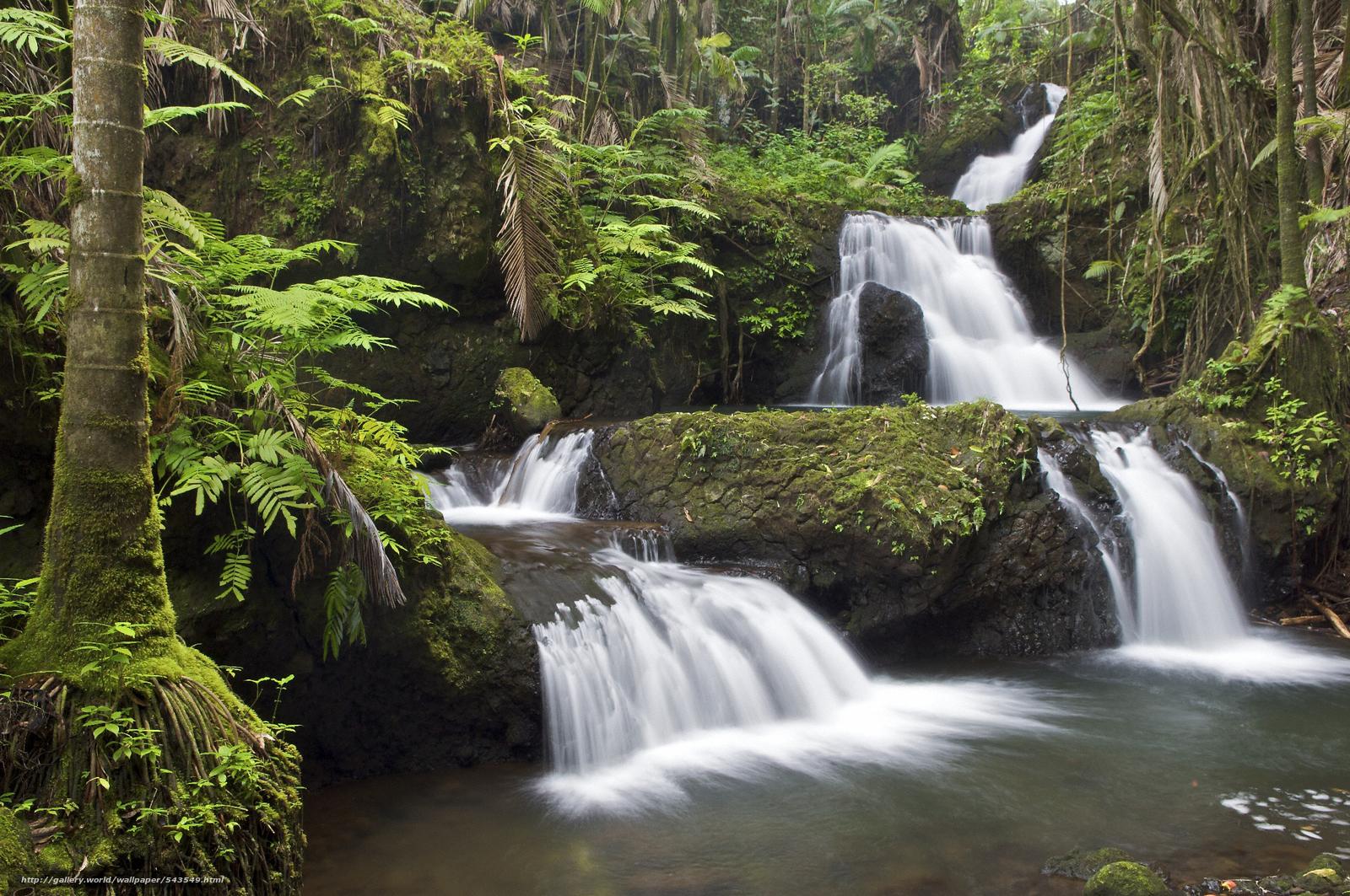 Download wallpaper Jungle Waterfall, South Hilo, Hawaii, nature