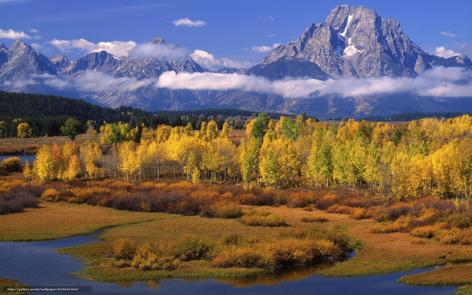download wallpaper aspen trees snake river mount moran
